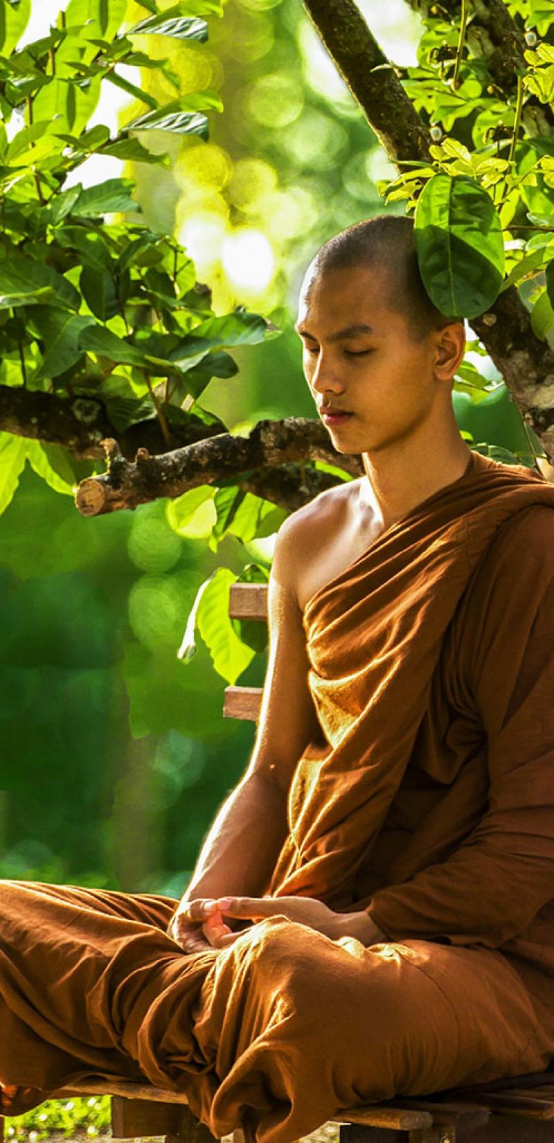 le-bouddha-resize